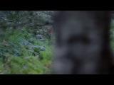 Мерлин. «Сердце охотника» 4 сезон 11 серия 720